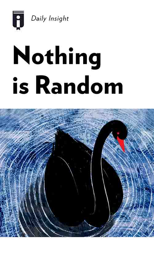 "Book Cover for ""Nothing is Random"""
