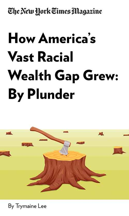 "Book Cover for ""How America's Vast Racial Wealth Gap Grew: By Plunder"""