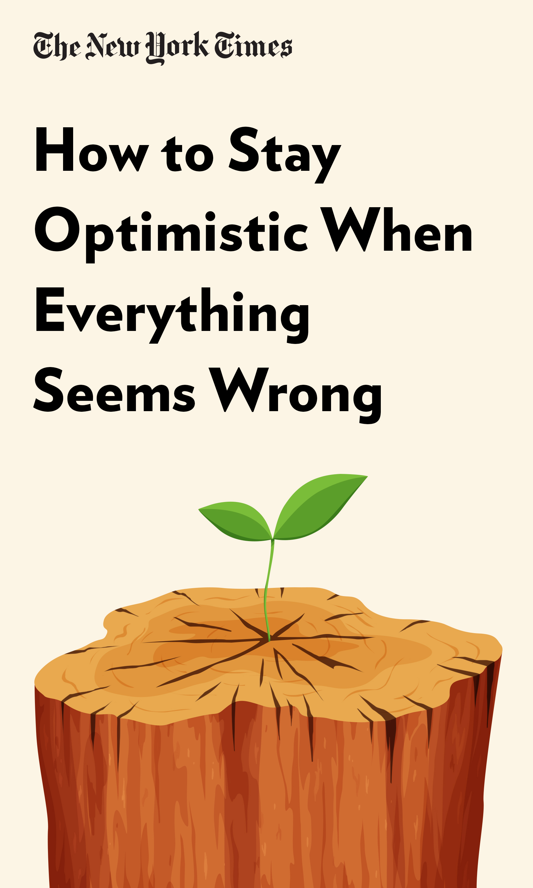 """Book Cover for """"How to Stay Optimistic When Everything Seems Wrong"""""""
