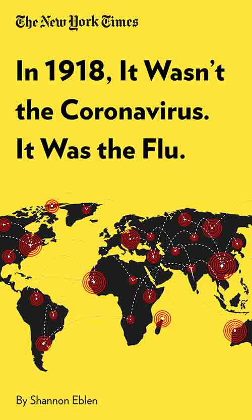 "Book Cover for ""In 1918, It Wasn't the Coronavirus. It Was the Flu."""