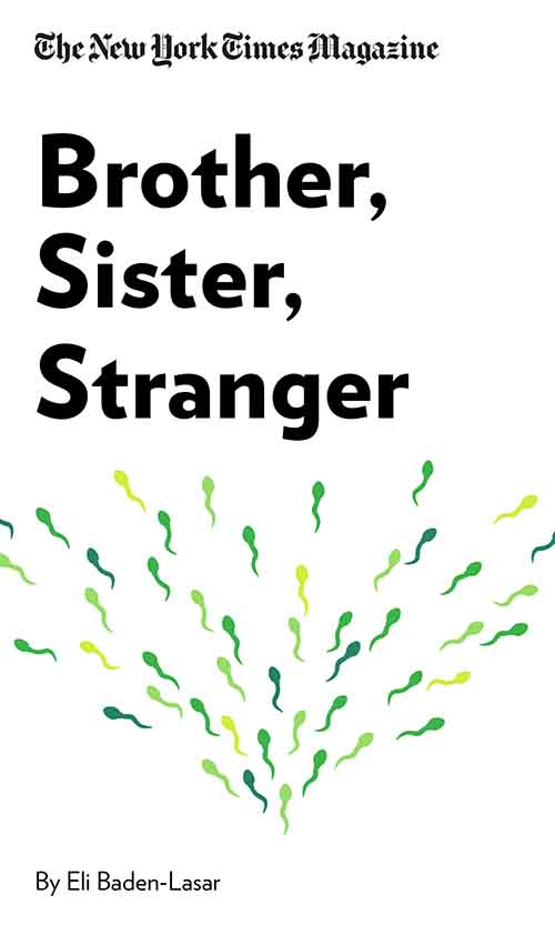"Book Cover for ""Brother, Sister, Stranger"""