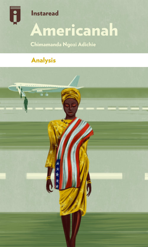 "Book Cover for ""Americanah"""