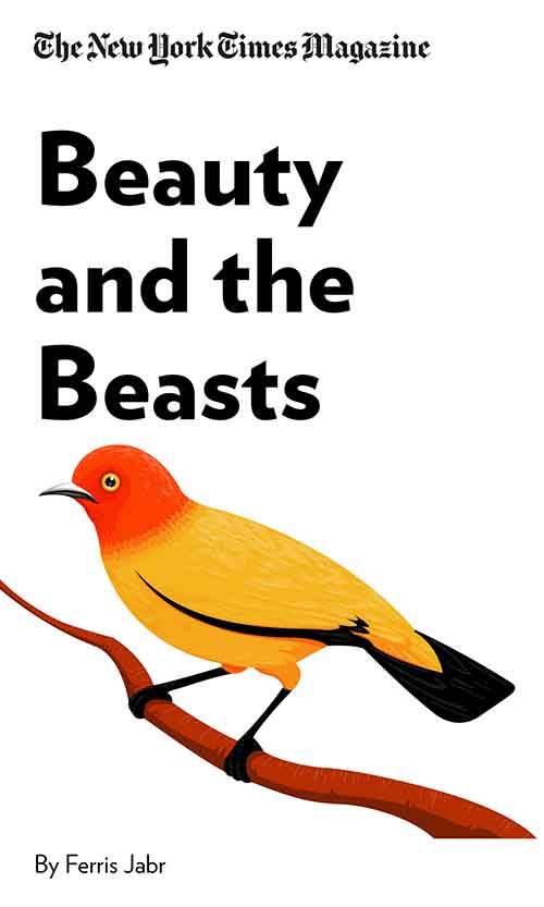 "Book Cover for ""Beauty and the Beasts"""