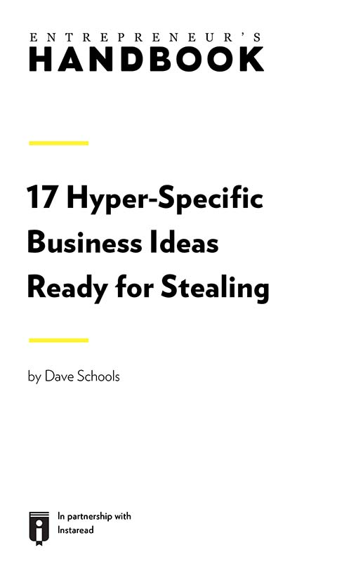 "Book Cover for ""17 Hyper-Specific Business Ideas Ready for Stealing"""