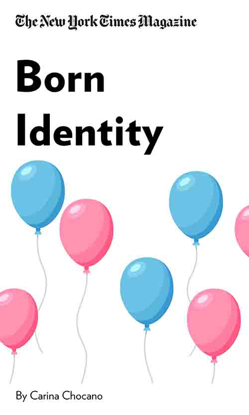 "Book Cover for ""Born Identity"""