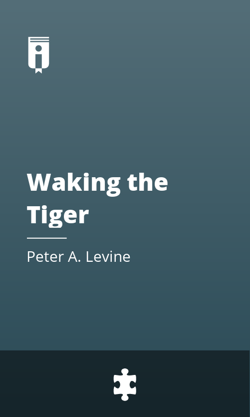 """Book Cover for """"Waking the Tiger"""""""