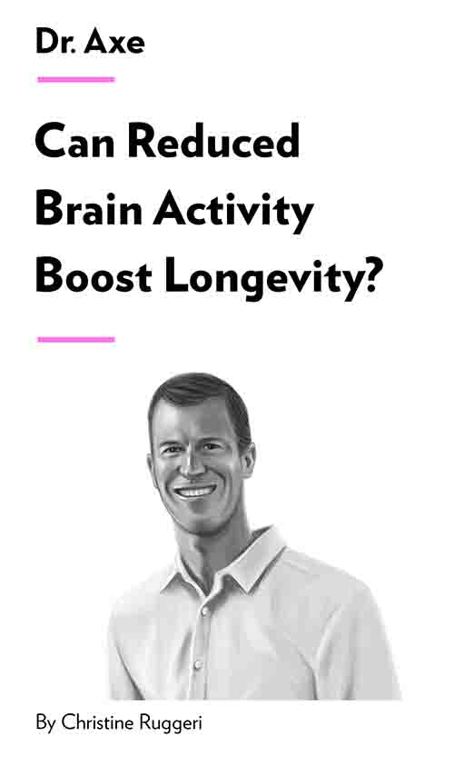 "Book Cover for ""Can Reduced Brain Activity Boost Longevity?"""