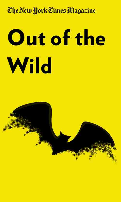 "Book Cover for ""Out of the Wild"""