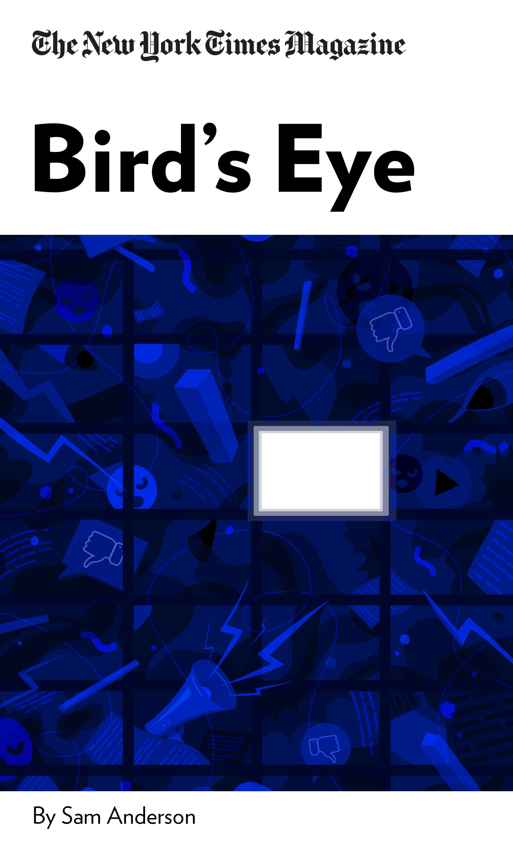 """Book Cover for """"Bird's Eye"""""""