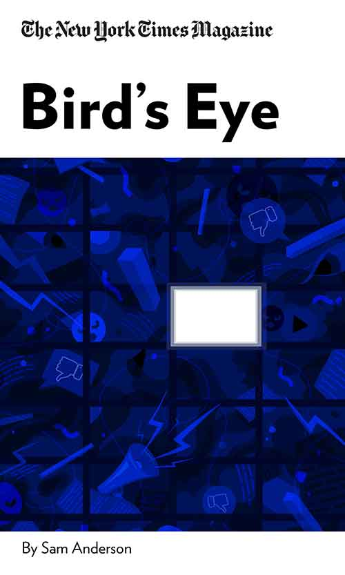 "Book Cover for ""Bird's Eye"""