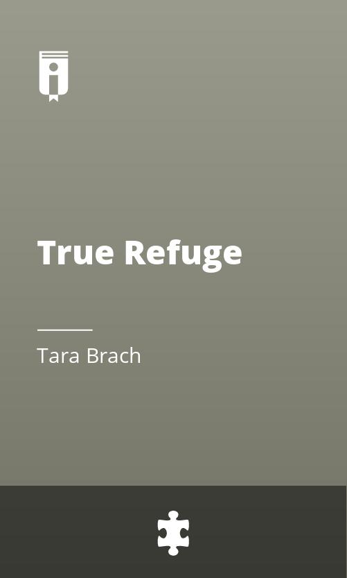"Book Cover for ""True Refuge"""