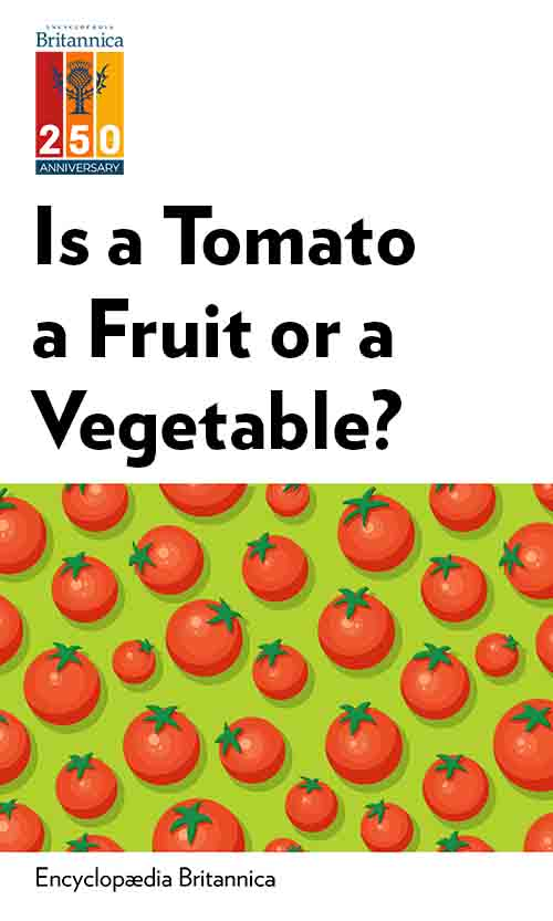 "Book Cover for ""Is a Tomato a Fruit or a Vegetable?"""