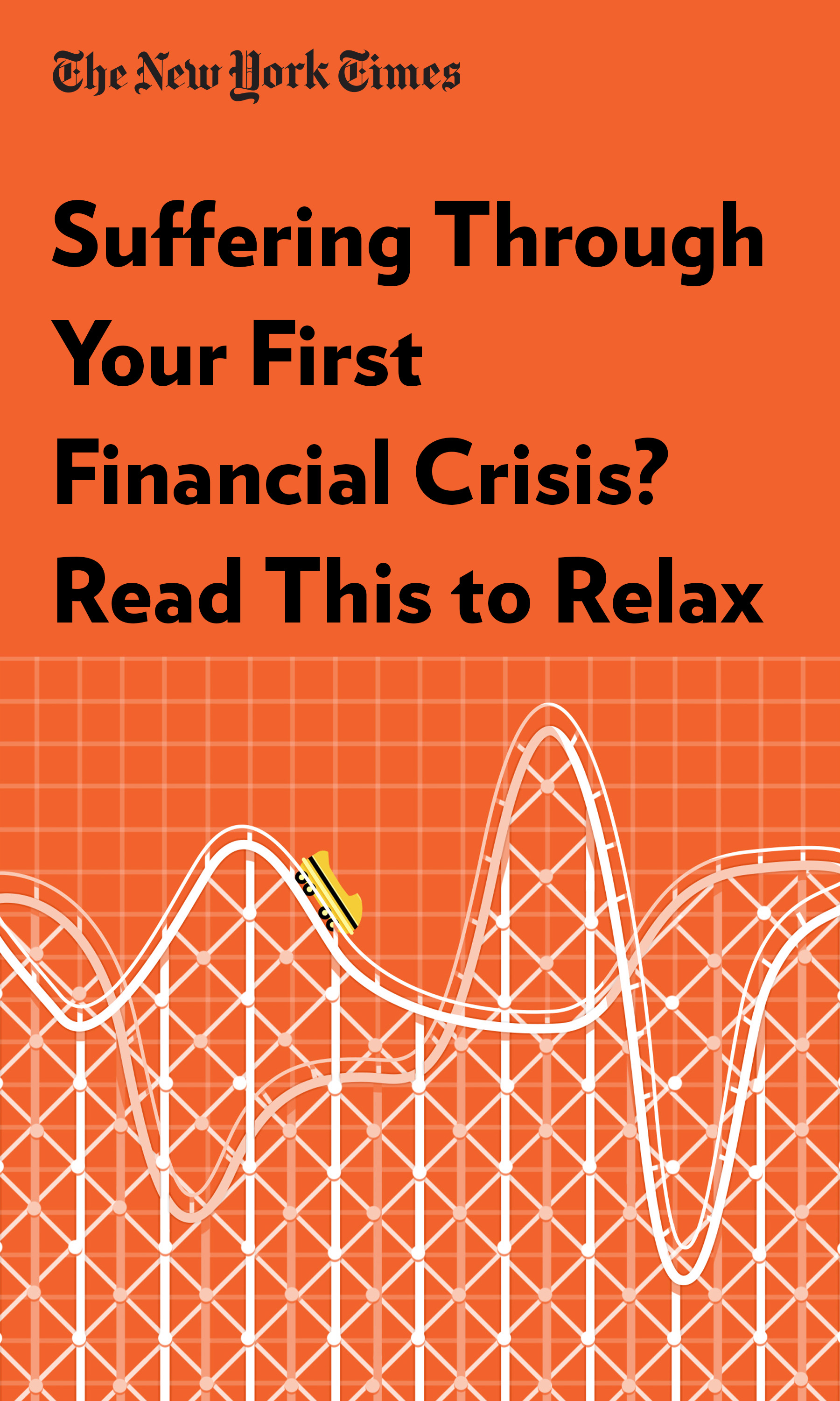 """Book Cover for """"Suffering Through Your First Financial Crisis? Read This to Relax"""""""