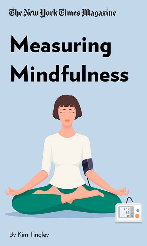 "Book Cover for ""Measuring Mindfulness"""